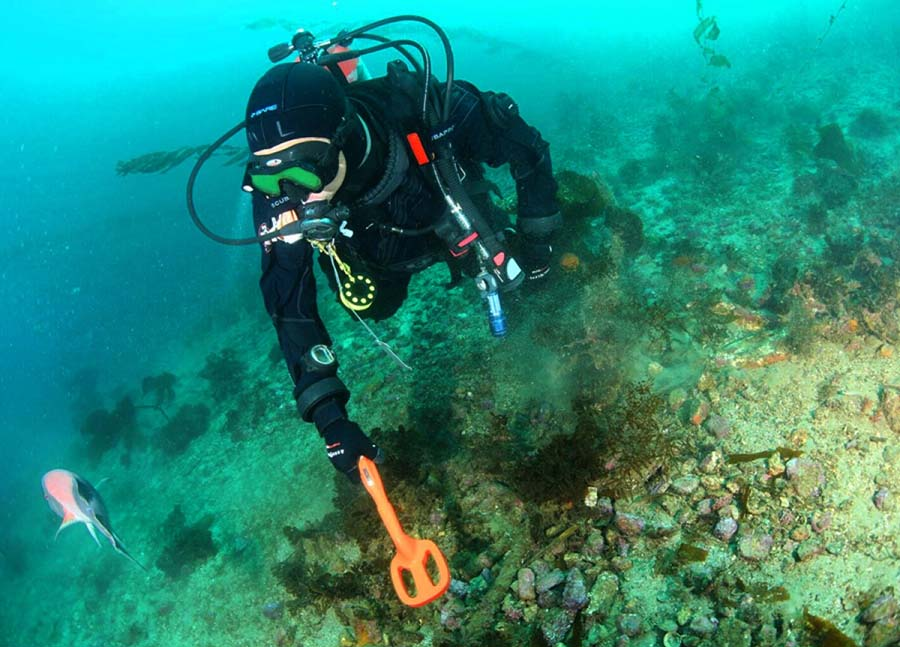 Diving with the Scuba Tector